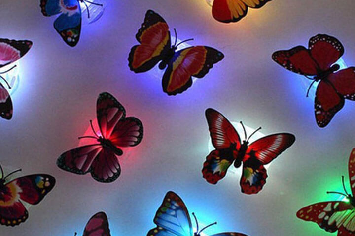 bướm sặc sỡ