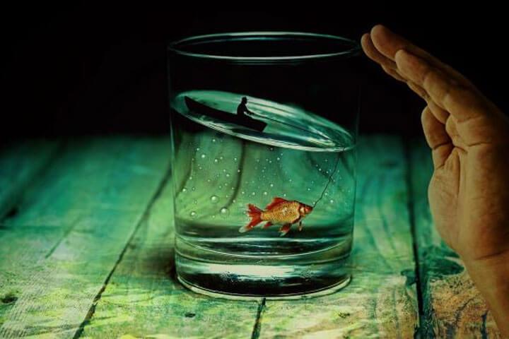 Điềm báo mơ về cá