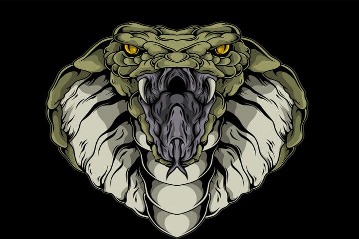 mơ thấy rắn hổ mang điềm xui