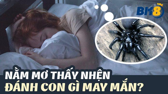 mơ thấy nhện có điềm gì