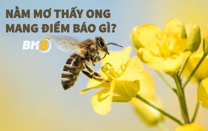 Năm mơ thấy ong nên đánh con gì?